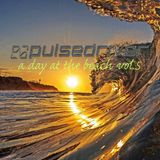 Pulsedriver - A Day At The Beach vol.5 (Continuous DJ Mix)