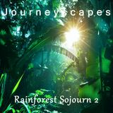 Rainforest Sojourn 2 (#088)