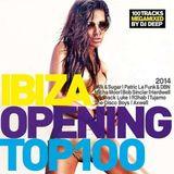 Ibiza Opening Top 100 2014 (2014)
