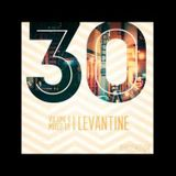 Thirty Mix Series - Thirty Vol. 8 (Mixed by Levantine) | Disco Motion Records
