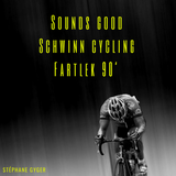 Sounds good Schwinn cycling Fartlek 90mn