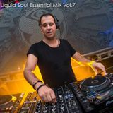 Liquid Soul - Essential Mix Vol.7