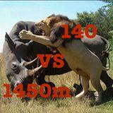 140 vs 1450M K&N Mix
