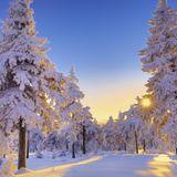 MadLiquid - Winter 2015 Promo Mix