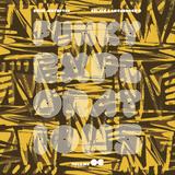 Funky Explorations #06 (Zelig Mxyzptlk)