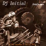Jungle mix @ Zone Inconnue radio show 13 Juillet 2015