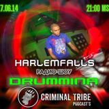 HarlemFalls Guest Mix - Big Beat Radio Group, Drum Mina - 17.06.14