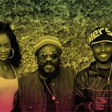 Wailers at blueFROG Bangalore