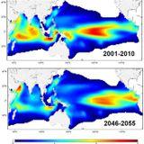 Changements climatiques et biodistribution des espèces marines