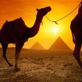 Desert expedition #1