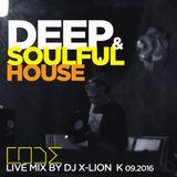 Deep & Soulful House CODE live mix by dj X-Lion_K  09-2016