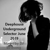Deephouse Underground Selector June 2019
