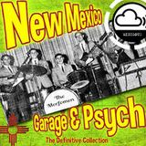 NEW MEXICO GARAGE PSYCH