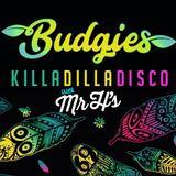 Budgies Killa-Dilla-Disco By Mr H's