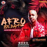 Dj Protege - (Afro Beast) PVE Vol 41