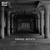 MusicForYourMindStep Vol 1 (Bonus Mix Version)