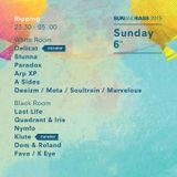 Quadrant and Iris @ Sun and Bass 2015 @ Ripping Black Room