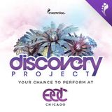 Discovery Project: EDC Chicago DJ Vektor