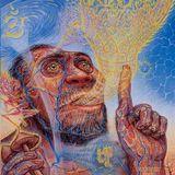 Consciousness Metamorphosis ~Outer Limits~ 3 September 2016