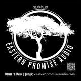 Phuture-T : The Eastern Promise Audio Radio Show Jungletrain.net 24-10-2014