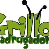 Grillos Madrugadores - Las Mantarrayas (220813)