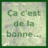C'est 1 tuerie tes épinards n°79 -  8 mai 2019 - Ça c'est de la bonne by C'est 1 Tuerie Tes Epinards