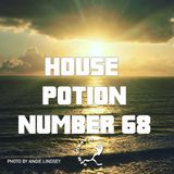 House Potion Number 68