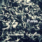 Schizophrénie passagère (Full)  By Pano (V.M.O)