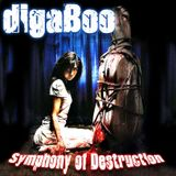 digaBoo - Symphony of Destruction (2011)