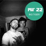 MIR 22 by Big Tiger