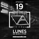MINIMAL CONNECTION by VICERAL EPISODIO 019 - elektronaradio.com