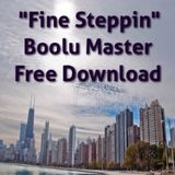 Fine Steppin Boolu R&B/Steppin Radio Mix Free Download Click Here