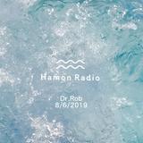 #133 Dr.Rob w/ Hamon Radio 1st session @ Ginfest Tokyo 2019 , Tennozu Harbar Market