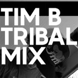 Tinker Podcast 102 - Tim B Tribal Mix