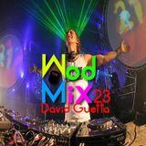 WodMix 23 - David Guetta