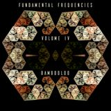 Fundamental Frequencies Volume IV