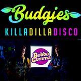 Budgies Killa-Dilla-Disco, Bubba Gumma Stage, The Beat Herder Festival 2018