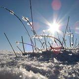 Winter Breeze (Prinzessin aus dem Eis Edit)