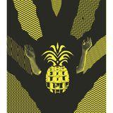 Chris Shea - Pineapple Rhythms 2013