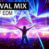 FESTIVAL MIX - Best EDM & Electro House Party Music Mix 2019