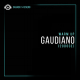 Gaudiano Warm Up Set (Diaz Tech @ 20DOCE) 14.01.2017