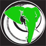 Ocobaya - U-Udios Bio Tape