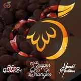 Grapes & Oranges (Coming soon Ep) Session by Harold Montana