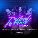 TRIBAL PERRON MIX DJ NANDO