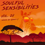 Soulful Sensibilities Vol. 28
