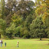 Highbury Park Summer Chill-Out