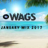 January Mix 2017