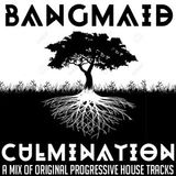 Bangmaid - Culmination II: another mix of original progressive house tracks