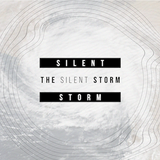 The Silent Storm: Crash Recovery - Part 2 - Audio