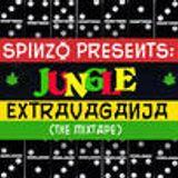 Spinzo Presents: Jungle ExtravaGanja (the mix)